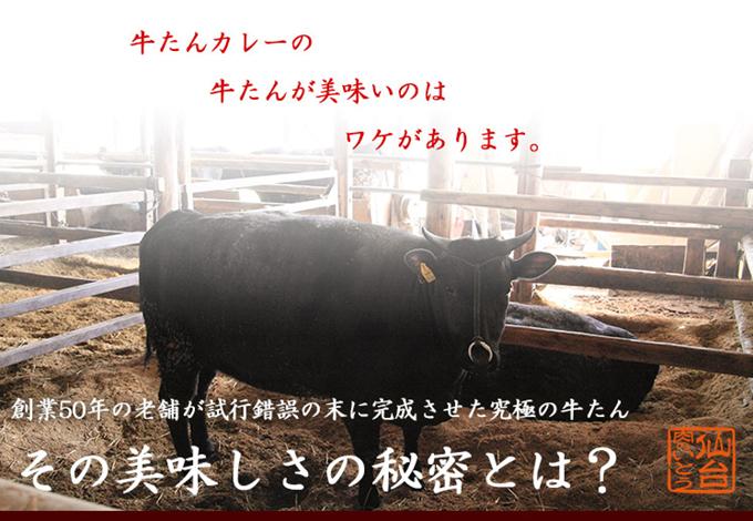牛たんカレーの牛たんが美味いのはワケがあります